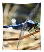 Sunning Blue Dragonfly Square Tapestry