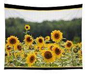 Sunny Days 8466 Tapestry