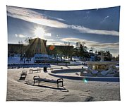 Sunny In The Snow Tapestry