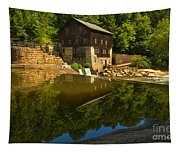 Sunny Refelctions In Slippery Rock Creek Tapestry
