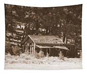 Sunny With Two Porches Tapestry