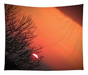 Sunrise And Hibernating Tree Tapestry