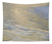 Sunrise On The River Ice #2 Tapestry