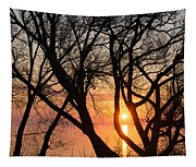 Sunrise Through The Chaos Of Willow Branches Tapestry