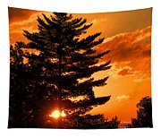 Sunset And Pine Tree  Tapestry