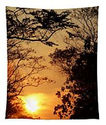 Sunset At Jungle Tapestry