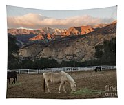 Sunset At Rancho Oso Tapestry