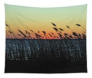 Sunset Colors Island Beach State Park Nj Tapestry