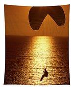 Sunset Flight Tapestry