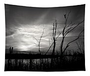 Sunset In Black And White Tapestry