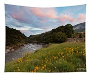 Sunset In Cobb Valley Of Kahurangi Np Of New Zealand Tapestry