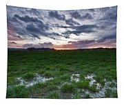 Sunset In The Swamp Tapestry