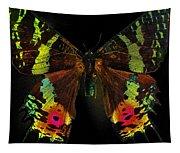 Sunset Moth Tapestry