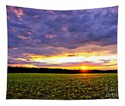 Sunset Over Farmland Tapestry