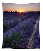 Sunset Over Lavender Tapestry