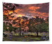 Sunset Reflections And Life Tapestry