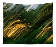 Sunset Swipe Tapestry