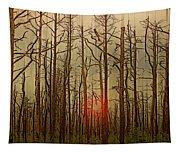Sunset Thru The Pine Barrens Tapestry