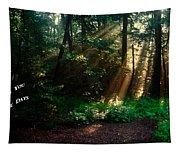 Sunshine Days Greeting Tapestry