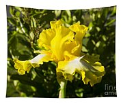 Sunshine Iris Tapestry