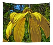 Sunshine On My Shoulders Tapestry