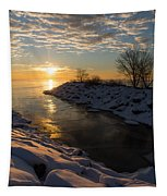 Sunshine On The Ice - Lake Ontario Toronto Canada Tapestry
