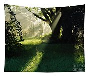Super Sunbeam Tapestry