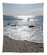 Surfing Mercury Tapestry