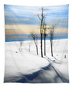 Surreal Snowscape Tapestry