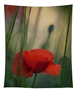 Surrealistic Red Tapestry