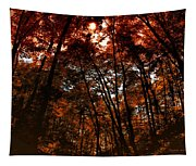 Surrounded By Autumn Tapestry