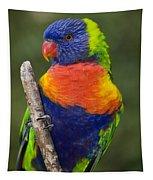 Swainsons Lorikeet Tapestry