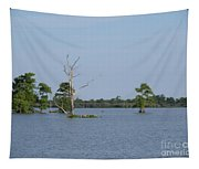 Swamp Cypress Trees Tapestry