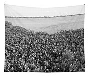 Swamp Hyacinths Water Lillies Black And White Tapestry