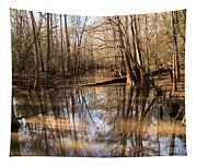 Swamp Reflections Tapestry