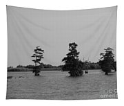Swamp Tall Cypress Trees Black And White Tapestry