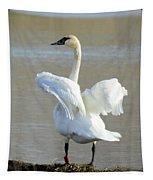Swan Dance Tapestry