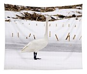 Swan Tapestry
