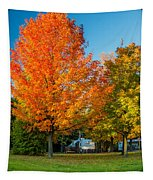 Sweet Autumn Tapestry
