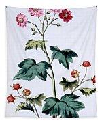 Sweet Canada Raspberry Tapestry