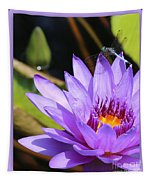 Sweet Dragonfly On Purple Water Lily Tapestry