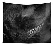 Sweet Dreams In Black And White Tapestry
