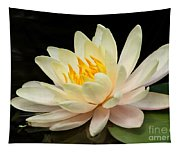 Sweet Peach Water Lily Tapestry