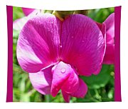 Sweetpea Flower Upclose Tapestry