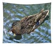 Swimming Duck  Tapestry