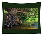 Swimming Hole Tapestry