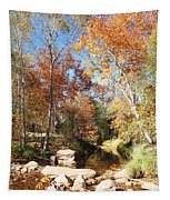 Sycamore And Cottonwood Trees Along The East Verde River Tapestry