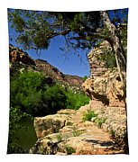 Sycamore Canyon Tapestry