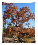 Sycamore Tree In Fall Colors Tapestry