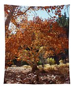 Sycamore Trees Fall Colors Tapestry